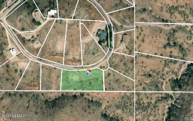 1860 E Aloha Loop 44/45, Nogales, AZ 85621 (#22123396) :: Long Realty - The Vallee Gold Team
