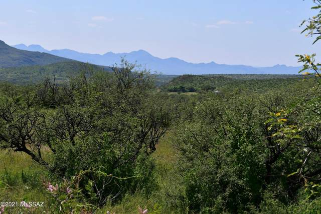 TBD Mesquite Trail 131/3, Tubac, AZ 85646 (#22123566) :: The Local Real Estate Group | Realty Executives