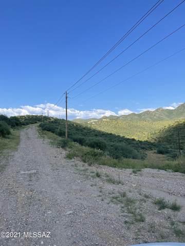 175 Ruta Camaron, Rio Rico, AZ 85648 (#22123655) :: The Local Real Estate Group | Realty Executives