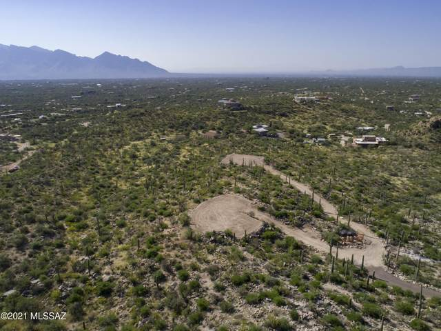 14192 N Gecko Canyon Trail, Tucson, AZ 85755 (#22123702) :: The Local Real Estate Group | Realty Executives