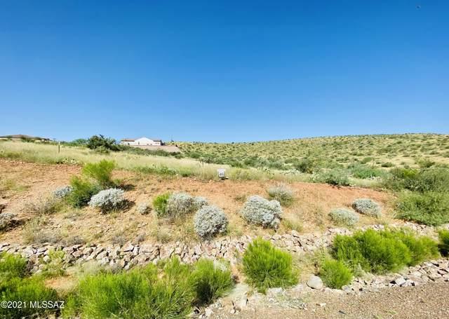 35156 S Quail Run Drive #46, Tucson, AZ 85739 (#22123777) :: The Local Real Estate Group | Realty Executives