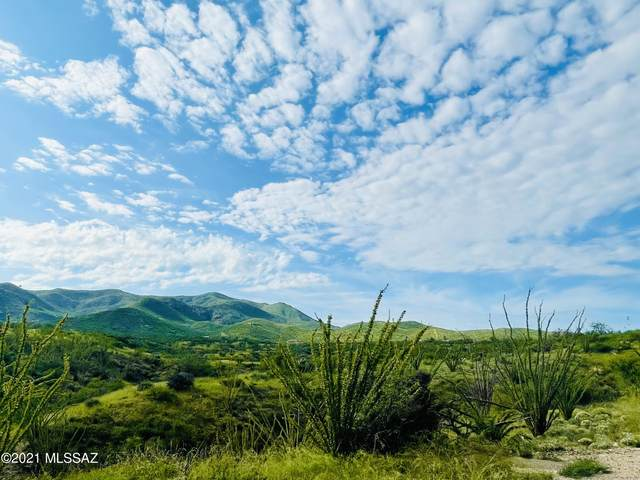 18779 S Sonoita Highway #2, Vail, AZ 85641 (#22123856) :: The Local Real Estate Group | Realty Executives