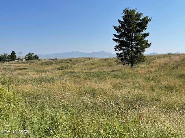 99 Cayuse Trail #126, Sonoita, AZ 85637 (#22123930) :: Kino Abrams brokered by Tierra Antigua Realty