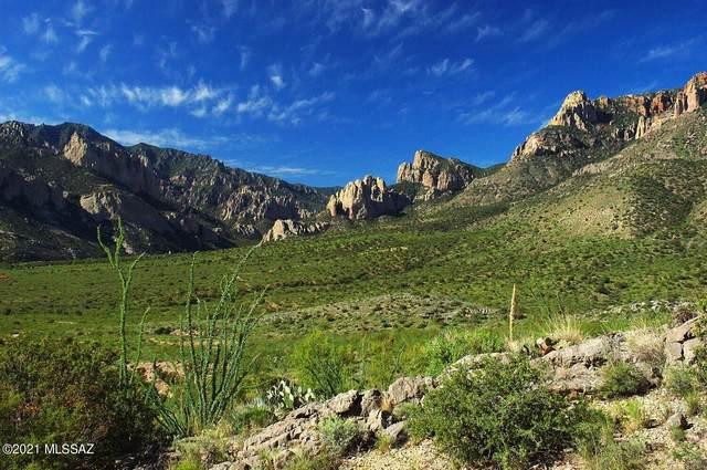 TBD #1 S Limestone Mountain, Portal, AZ 85632 (#22124290) :: Keller Williams