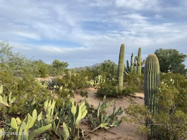 12111 W Kirk Lane, Tucson, AZ 85743 (#22124525) :: Tucson Property Executives