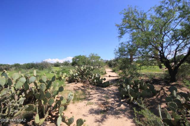 12911 Moeur Road #139, Tucson, AZ 85736 (#22124558) :: Kino Abrams brokered by Tierra Antigua Realty