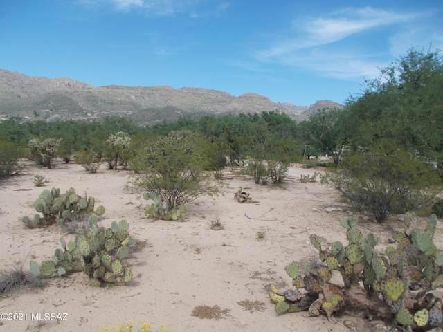 4174 N Soldier Trail, Tucson, AZ 85749 (#22124569) :: Kino Abrams brokered by Tierra Antigua Realty