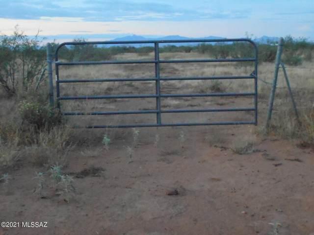 40 Acres Desert Willow Road #0, Pearce, AZ 85625 (#22124761) :: Tucson Property Executives