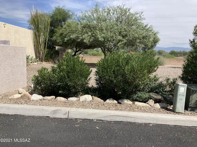 3750 N Country Club Road #60, Tucson, AZ 85716 (#22125137) :: Kino Abrams brokered by Tierra Antigua Realty