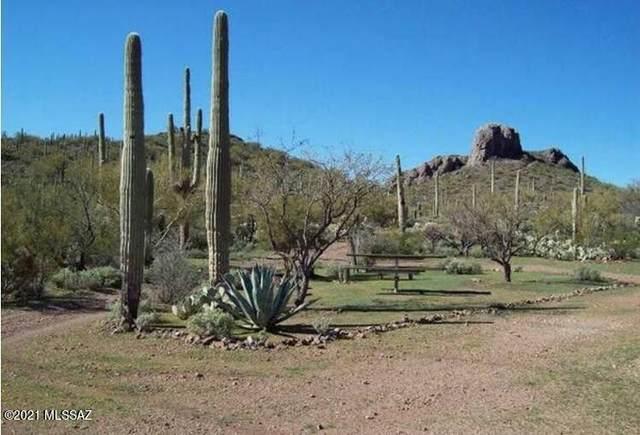 32820 S Timbaleo Road, Marana, AZ 85653 (#22125518) :: Kino Abrams brokered by Tierra Antigua Realty