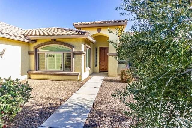 2301 E Bluejay Bluff Lane, Green Valley, AZ 85614 (#22125647) :: The Dream Team AZ