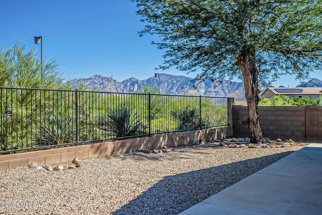 13068 N Desert Olive Drive, Oro Valley, AZ 85755 (#22125878) :: Kino Abrams brokered by Tierra Antigua Realty