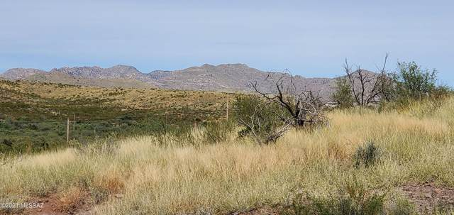 13781 S Bell Road, Benson, AZ 85602 (#22125898) :: Long Realty - The Vallee Gold Team