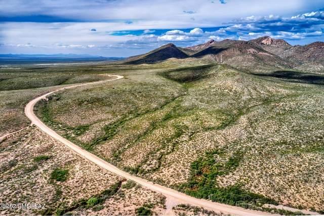TBD E Geronimo Trail 62 & 63, Douglas, AZ 85607 (#22126172) :: Long Realty - The Vallee Gold Team