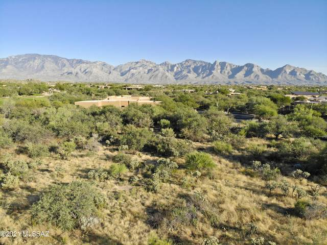 1332 W Twisted Mesquite Place Lot 3, Oro Valley, AZ 85755 (#22126272) :: The Dream Team AZ