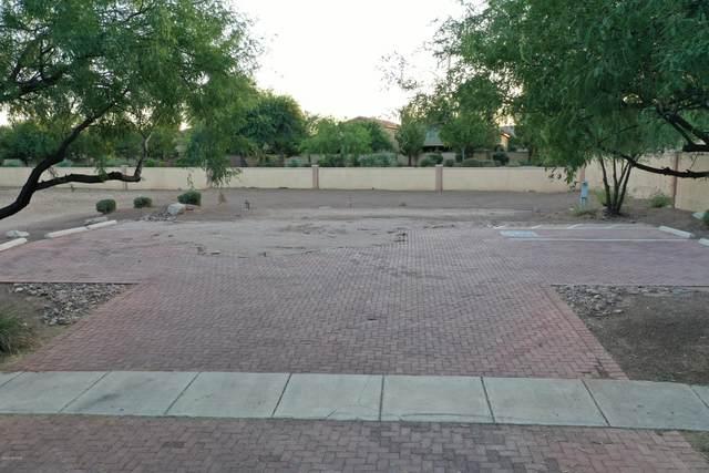 162 E Placita Haciendas Del Lago #18, Sahuarita, AZ 85629 (#22126488) :: AZ Power Team
