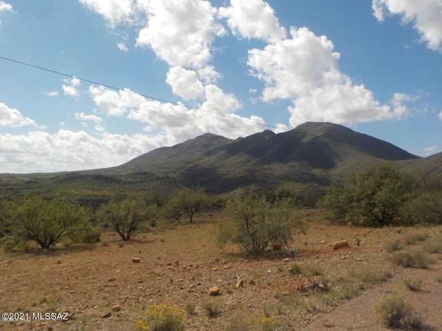 137 Circulo Milpas, Rio Rico, AZ 85648 (#22126543) :: Long Realty - The Vallee Gold Team