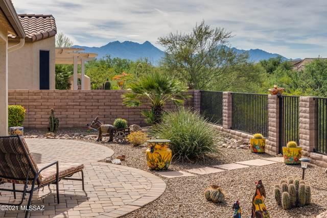 1133 N Night Heron Drive, Green Valley, AZ 85614 (#22126598) :: AZ Power Team