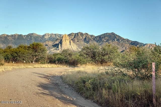 1951 W Quail Way, Amado, AZ 85645 (MLS #22126814) :: My Home Group