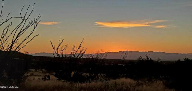 11240 E Camino Aurelia, Vail, AZ 85641 (MLS #22126825) :: The Property Partners at eXp Realty