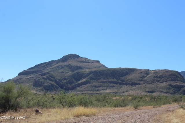 19 Trujillo Trail #51, Tubac, AZ 85646 (#22126883) :: Gateway Partners International