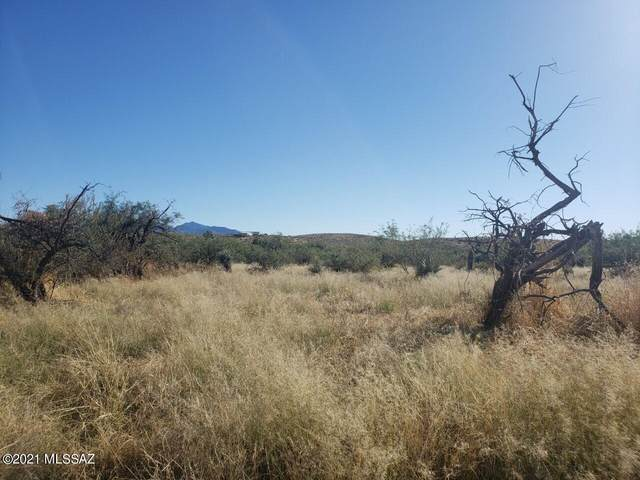 TBD E Bell Road, Benson, AZ 85602 (MLS #22127101) :: The Property Partners at eXp Realty