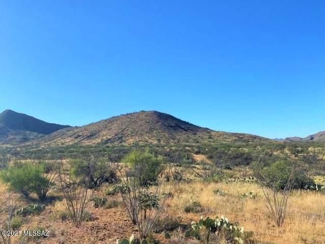 17450 S Sunbird Lane #119, Tucson, AZ 85736 (MLS #22127412) :: The Property Partners at eXp Realty