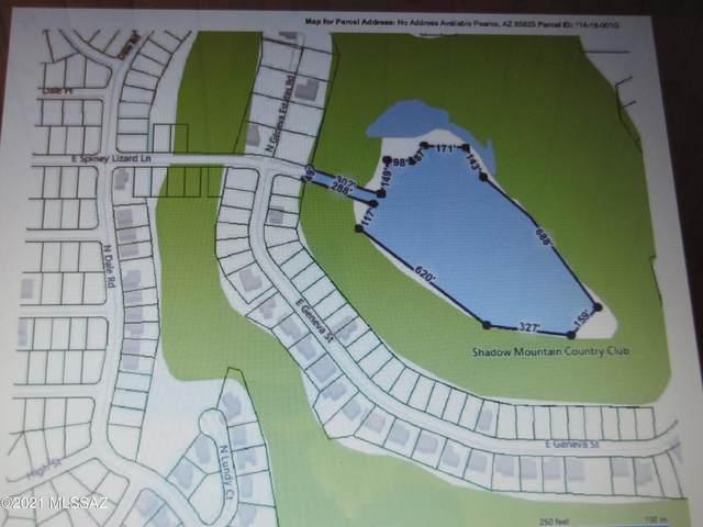 TBD Spiny Lizard, Pearce, AZ 85625 (#22127517) :: Tucson Real Estate Group