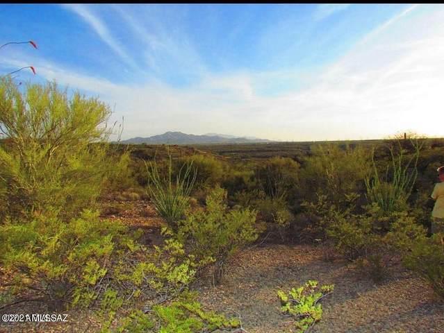 14970 E Blue Lava Trail, Vail, AZ 85641 (#22127548) :: The Crown Team