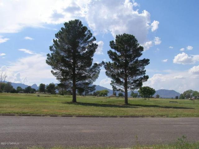 2 Golf Lots On Geneva Street, Pearce, AZ 85625 (#21227947) :: Long Realty - The Vallee Gold Team