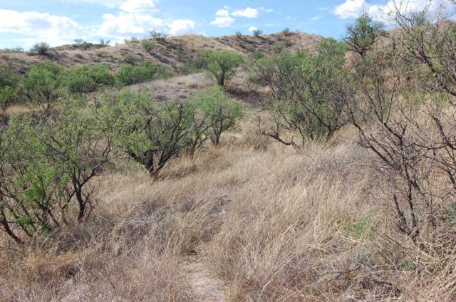 Grey Hawk Trail #1, Patagonia, AZ 85624 (#21312664) :: Tucson Property Executives