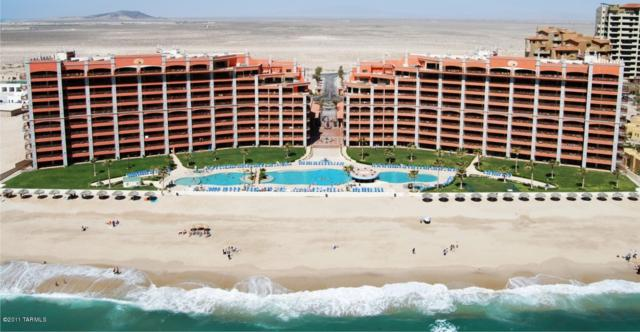 409 Sonoran Sun East E, Puerto Penasco, MX 83554 (#21423812) :: RJ Homes Team