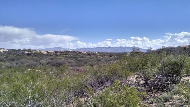 817 E Sylvester Spring Place #125, Green Valley, AZ 85614 (#21507721) :: Long Realty - The Vallee Gold Team