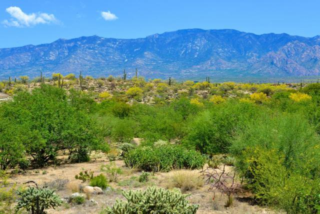 14201 N Honey Bee Trail #22, Oro Valley, AZ 85755 (#21512527) :: Long Realty Company