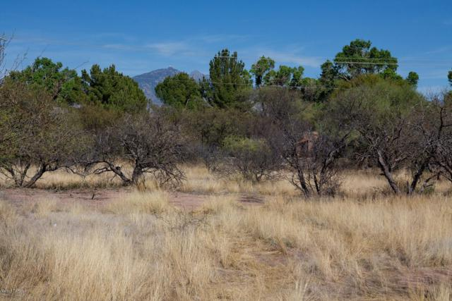 2363 Camino Esplendido #66, Tubac, AZ 85646 (#21608777) :: The Local Real Estate Group | Realty Executives