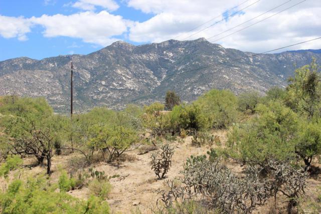 5225 E Cloud Nine Drive #0, Catalina, AZ 85739 (#21614116) :: Long Realty Company