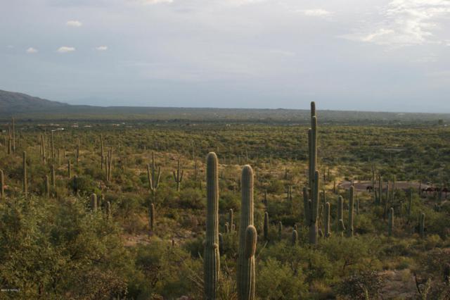 3060 N Placita De Nazca N, Tucson, AZ 85749 (#21616931) :: Long Realty - The Vallee Gold Team