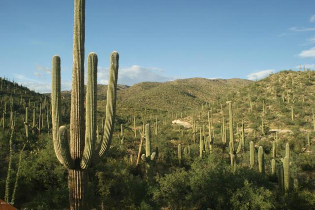 13665 E Placita Del Inca, Tucson, AZ 85749 (#21617079) :: Long Realty - The Vallee Gold Team
