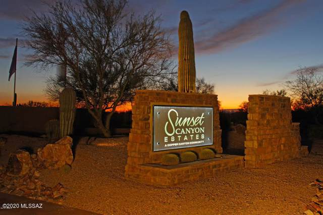 11960 N Vista Del Sol #19, Oro Valley, AZ 85742 (#21629021) :: Long Realty - The Vallee Gold Team