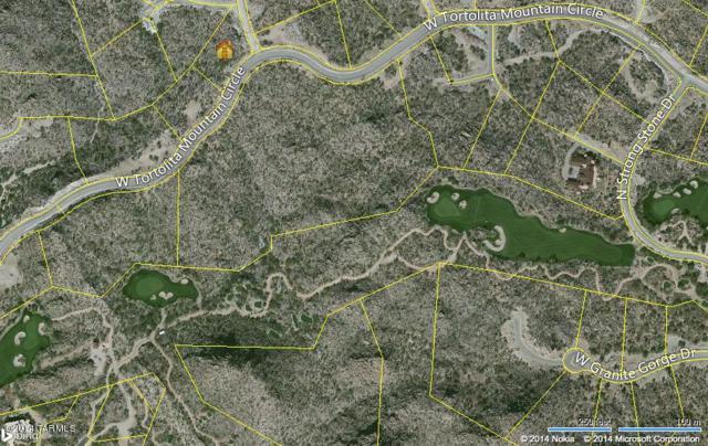 1313 W Tortolita Mountain Circle #408, Oro Valley, AZ 85755 (#21707567) :: Long Realty - The Vallee Gold Team