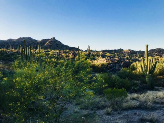 1429 W Tortolita Mountain Circle #469, Oro Valley, AZ 85755 (#21707569) :: Long Realty - The Vallee Gold Team