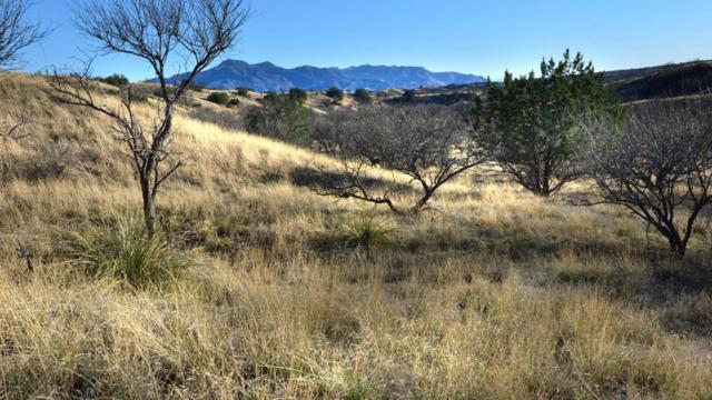 TBD Benedicts Lane ., Patagonia, AZ 85624 (#21708023) :: Long Realty Company