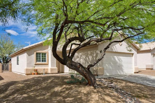 2058 W Cholla Vista Drive, Tucson, AZ 85704 (#21721913) :: Long Realty - The Vallee Gold Team