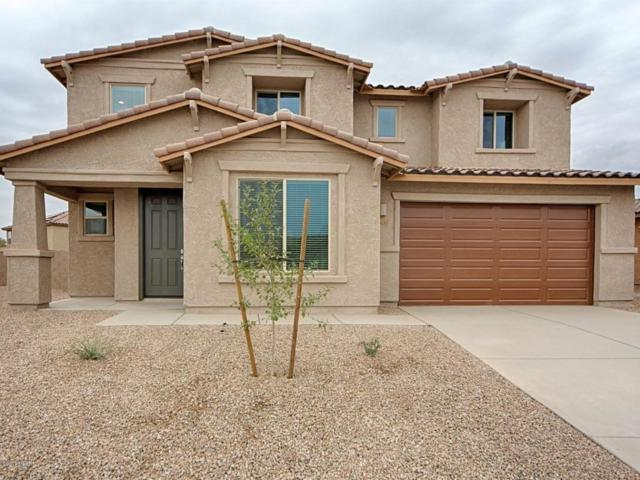 12409 N Willowvale Drive, Marana, AZ 85653 (#21722095) :: The Josh Berkley Team