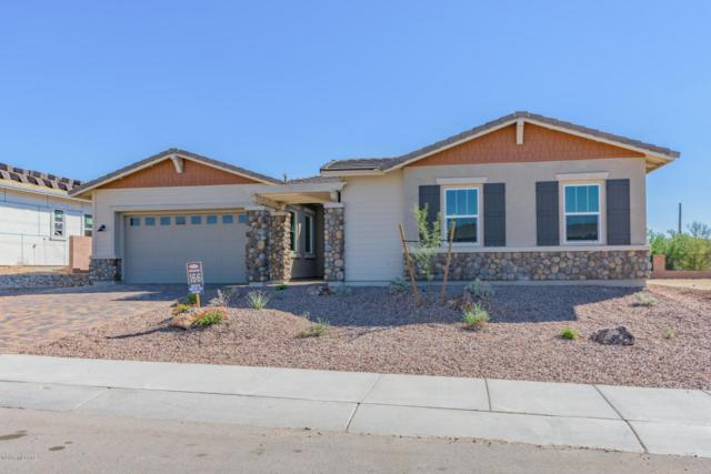 14210 N Hidden Arroyo Ps Pass N, Marana, AZ 85658 (#21722180) :: Long Realty Company