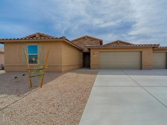 12399 N Sandby Green Drive, Marana, AZ 85653 (#21722668) :: The Josh Berkley Team