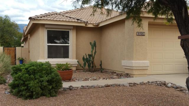 13230 N Mortar Pestle Court, Oro Valley, AZ 85755 (#21727223) :: Keller Williams