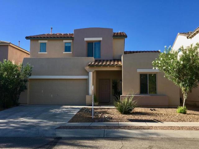 104 E Camino Limon Verde, Sahuarita, AZ 85629 (#21727297) :: The Anderson Team | RE/MAX Results