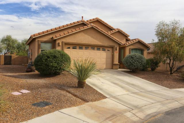 12596 N Skoda Drive, Marana, AZ 85653 (#21727473) :: The Anderson Team | RE/MAX Results