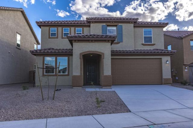11727 W Boll Bloom Drive, Marana, AZ 85653 (#21728174) :: The Josh Berkley Team